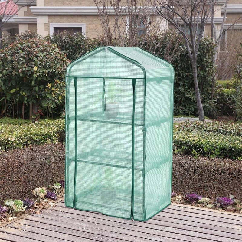 Gewächshaus aus Folie mit zwei Pflanzen drin