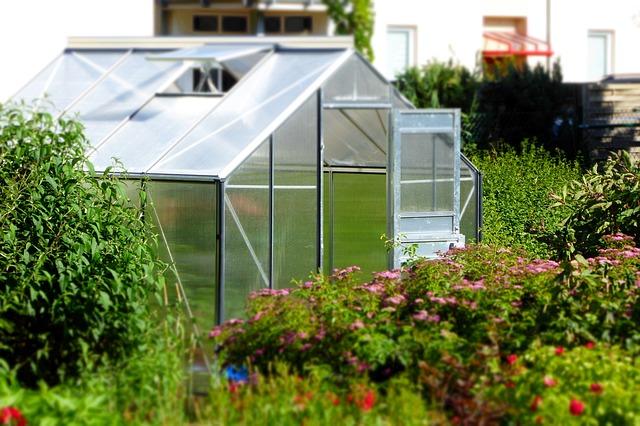 Gewächshaus mit offener Tür in einem schönen Garten