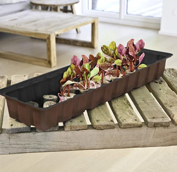 Windhager Zimmergewächshaus auf Holztisch